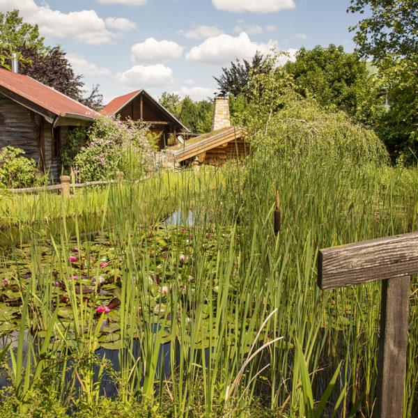 Hotelgarten und Teich